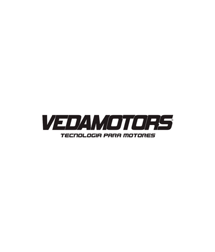 VEDAMOTORS.png
